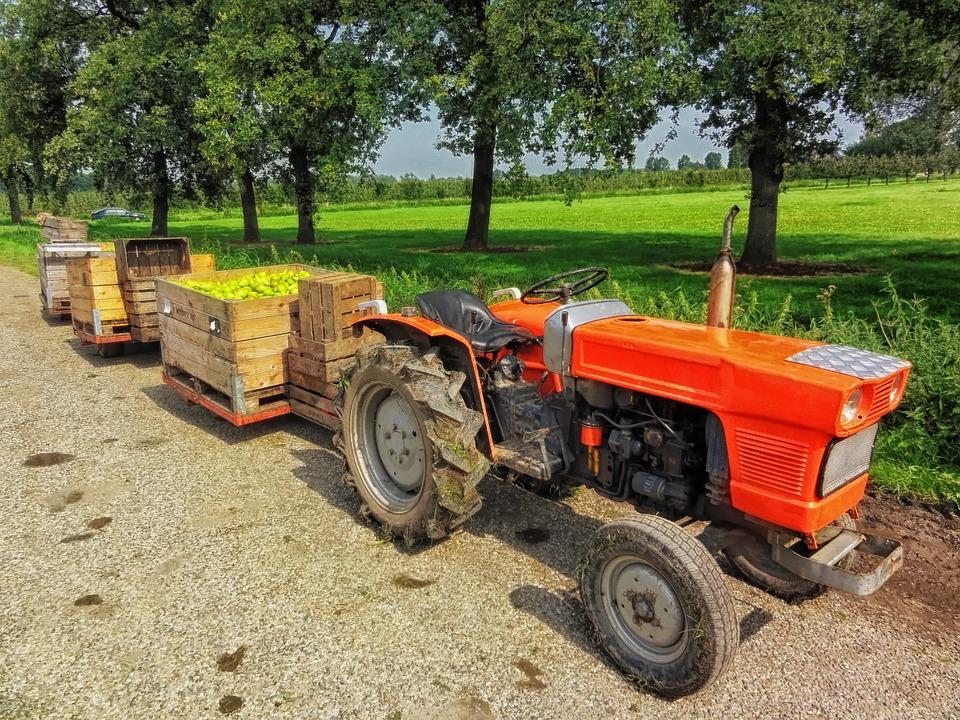 Wat weten we nu echt van het boerenleven?