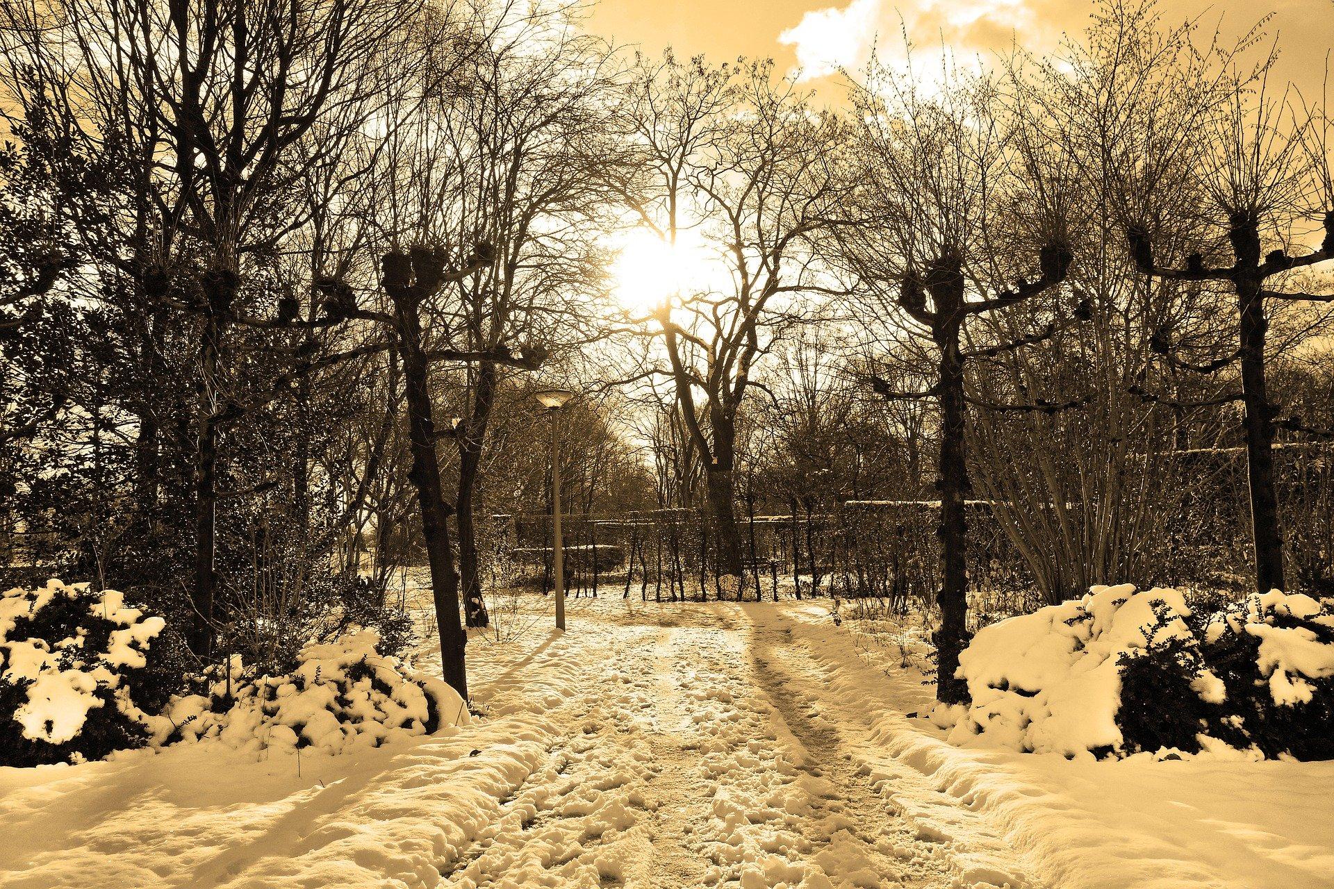 Blog Rinnie: Er valt sneeuw
