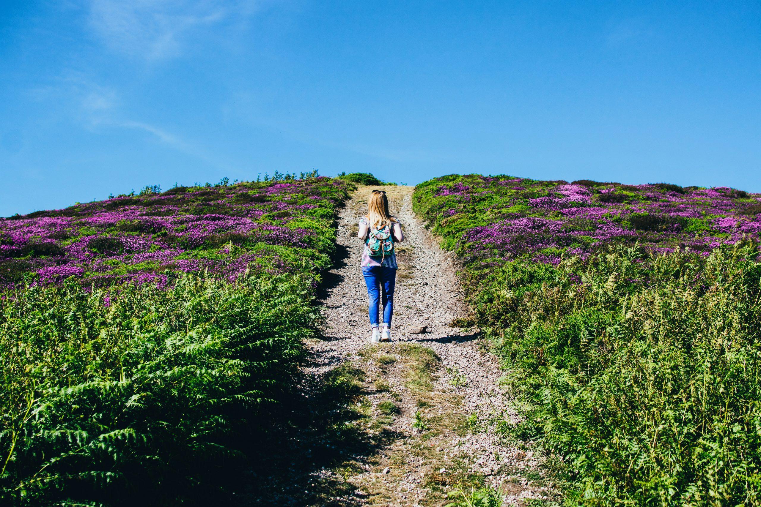 Deze zomer wandelen? Lees eerst Het Zoutpad van Raynor Winn